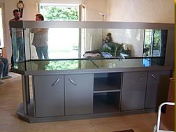 aquarien und terrarien indiv gestalten aquariumbau. Black Bedroom Furniture Sets. Home Design Ideas